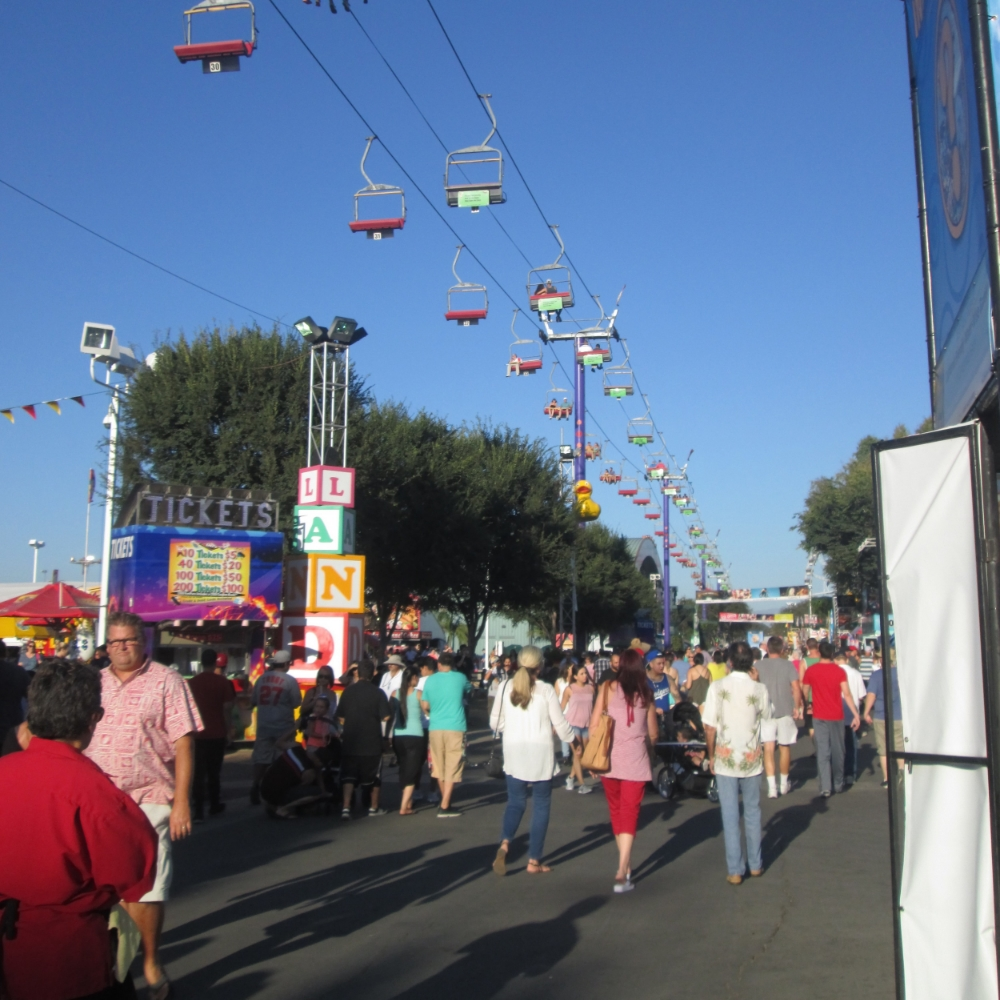 The OC fair has something for everyone – music, games, rides, animals, and of course, lots and lots of food!