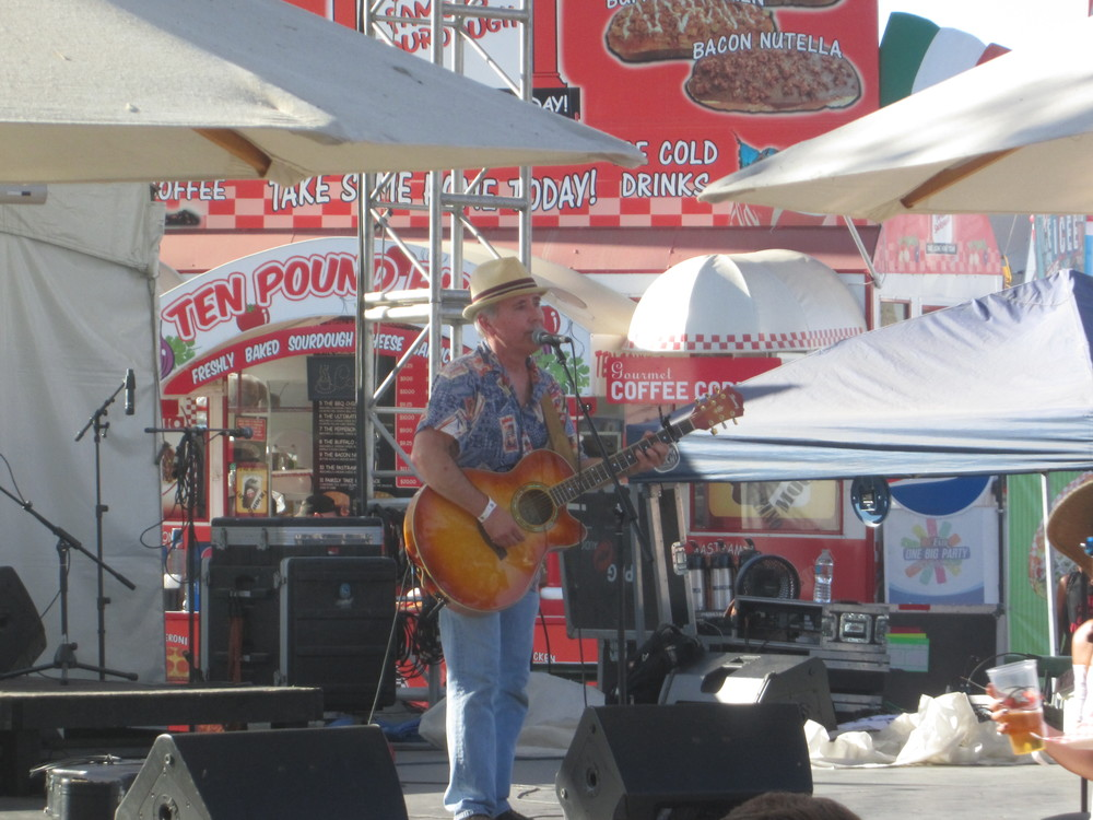 The fair featured several talented local musicians.