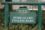 foaling barn sign