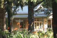 summerhill stud office