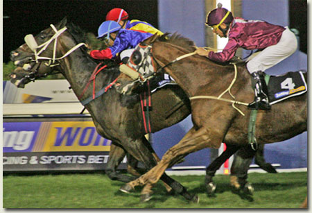 Safwan and Golden Chariot win Betting World 1900