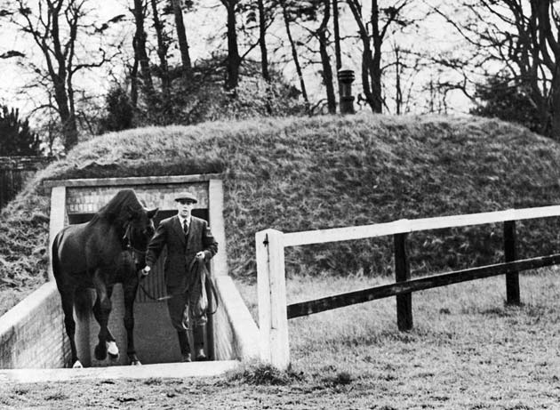 Nearco - The All Clear