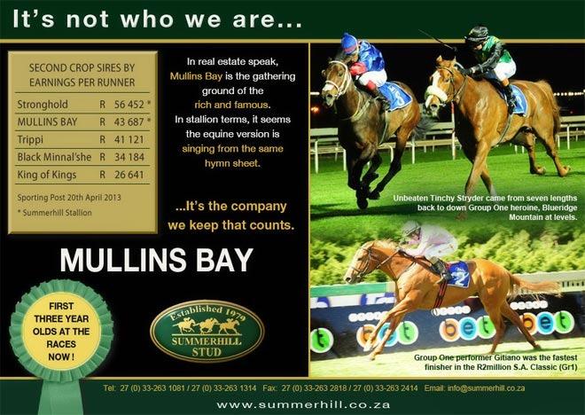 mullins-bay-national-yearling-sale-13.jpg