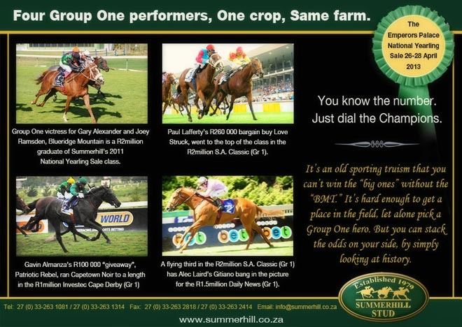 emperors-palace-national-yearling-sale-13.jpg