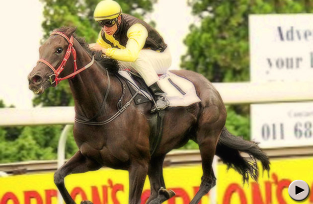 Cherry On The Top wins the Wilgerbosdrift Gauteng Fillies Guineas