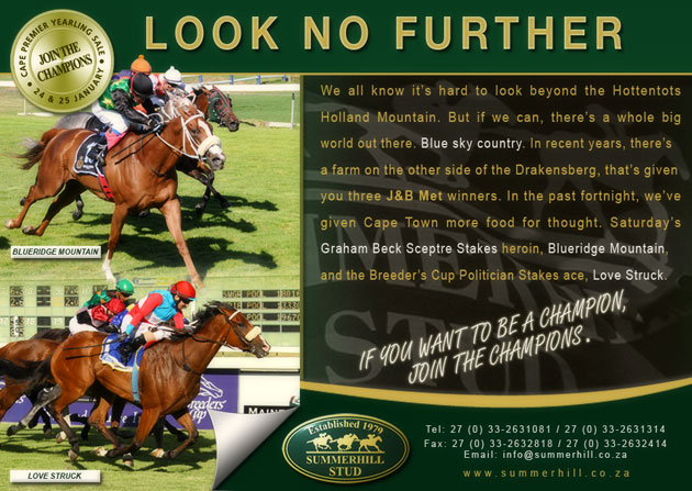 Cape Premier Yearling Sale 2013