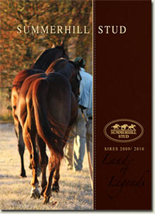 summerhill sires brochure