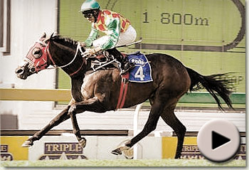 Checcetti wins the Jacaranda Handicap