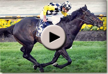 so you think winning the cox plate for bart cummings