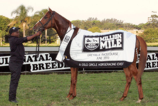 Gitiano - KwaZulu-Natal Breeders Million Mile
