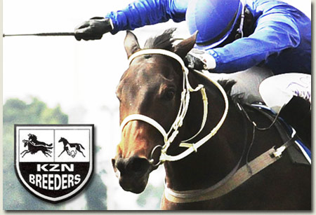 Extra Zero - KZN Breeders Awards