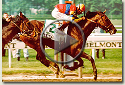 ap indy belmont stakes 1992 video