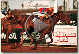ap indy breeders cup classic 1992 video
