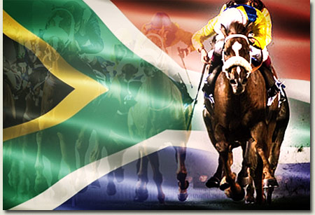 imbongi south african horseracing