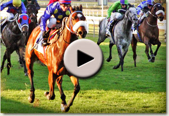 video of jj the jet plane winning the mercury sprint at clairwood racecourse