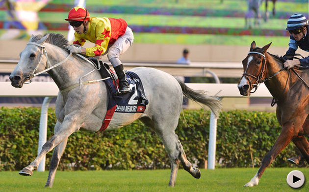 California Memory wins Hong Kong Cup