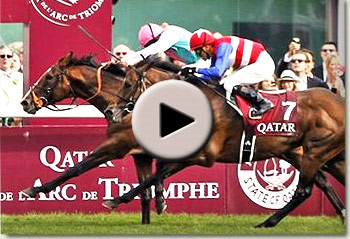 workforce winning the qatar prix de l'arc de triomphe