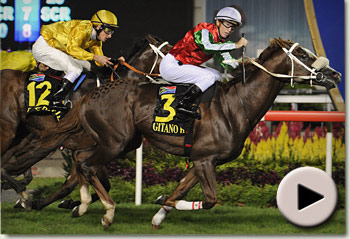 Gitano Hernando wins Singapore Airlines International Cup for trainer Herman Brown