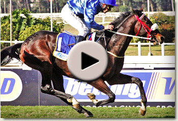 video of irish flame winning the gold circle derby at clairwood racecourse
