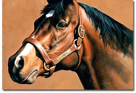 danzig stallion