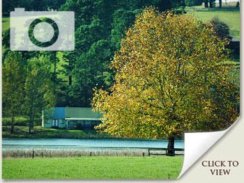 Autumn photos of Summerhill Stud, Mooi River