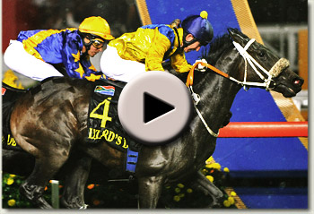lizard's desire singapore airlines international cup 2010 video