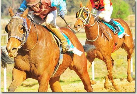 Phunyuka Vaal Sand Racecourse