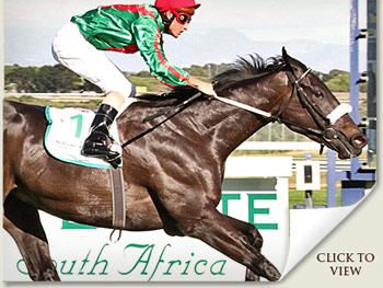 Ebony Flyer wins Cape Fillies Guineas