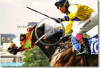fisani gauteng fillies guineas video