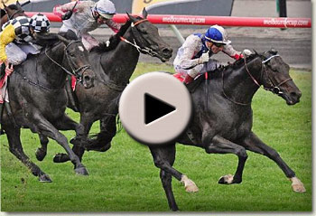 american wins emirates melbourne cup 2010 video