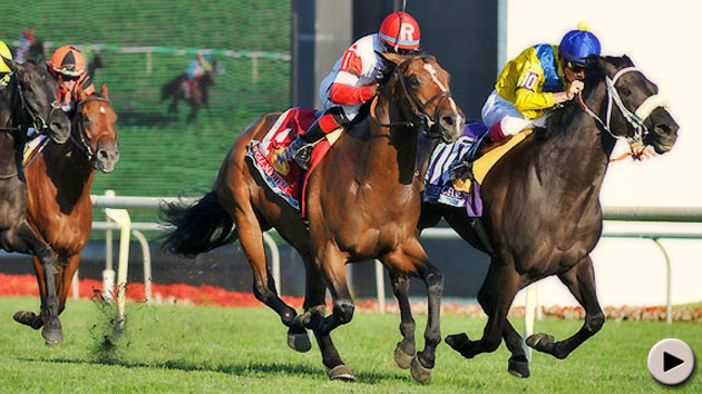 Real Solution and The Apache - Arlington Million