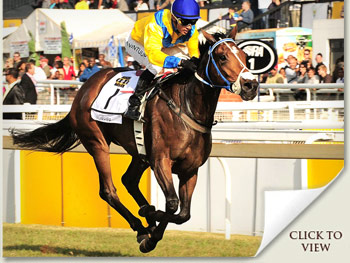 Igugu winner of the South African Triple Tiara and Highveld Racing Awards Nominee
