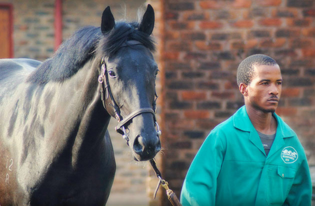 Sibusiso Shabalala Ready To Run Jockey