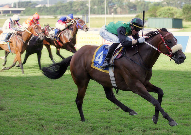 rio carnival wins king's cup