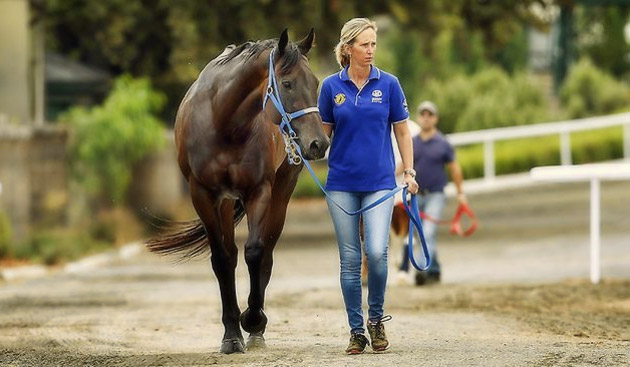 Black Caviar Horse
