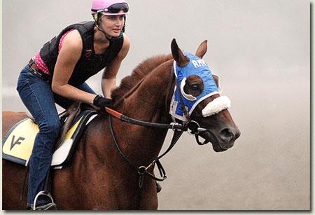 Visionaire Racehorse