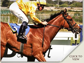 river jetez racehorse