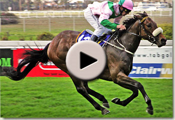 danehill darling by way west winning her maiden at clairwood racecourse