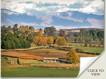 summerhill farm south africa