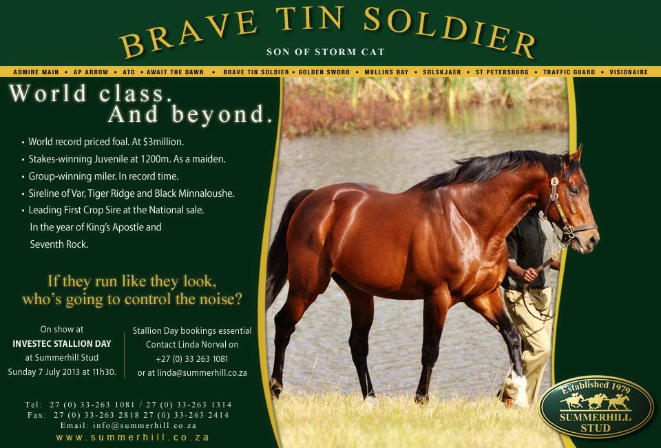 Brave Tin Soldier - Stallion Day 2013