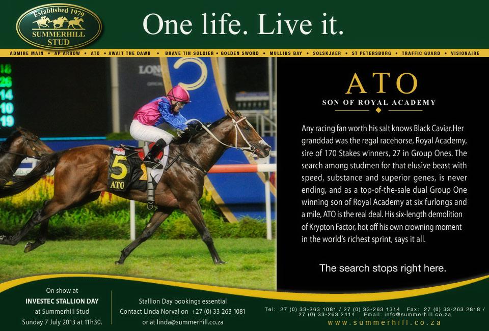 Ato - Stallion Day 2013