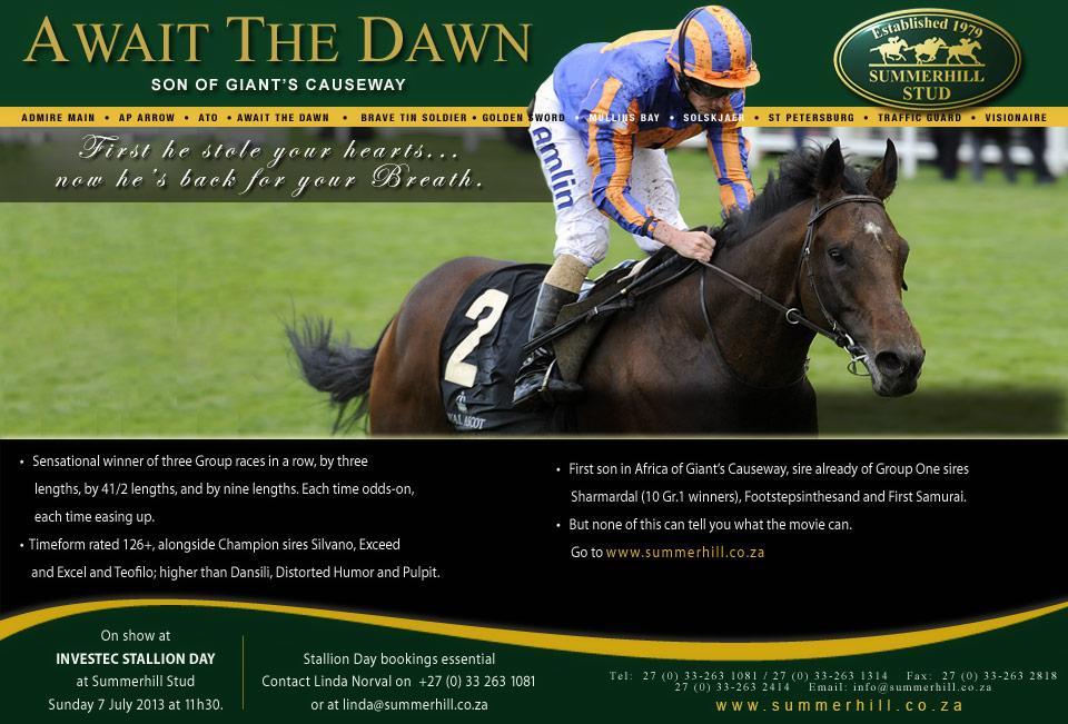 Await The Dawn - Stallion Day 2013