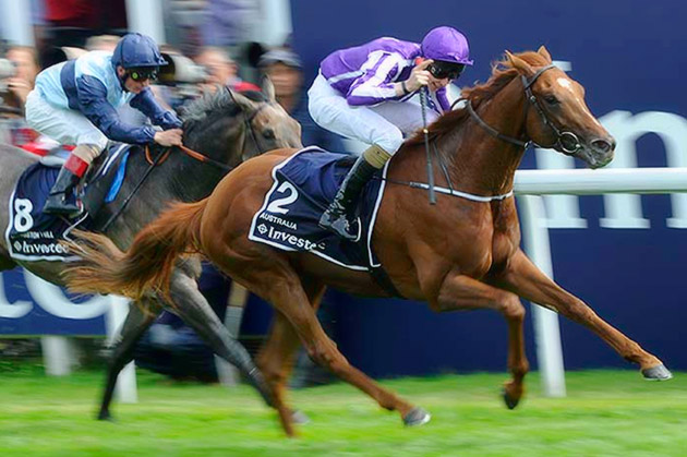 Australia - Investec Derby (Group 1) / OwnerBreeder (p)