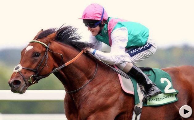 Frankel Racehorse