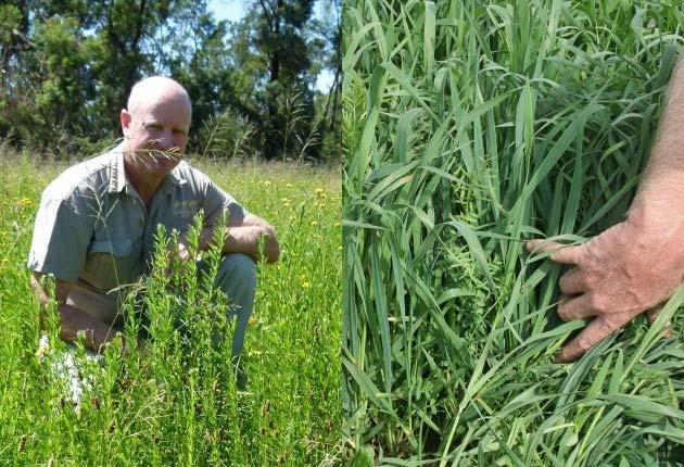 Haydn Bam - Bio-farming