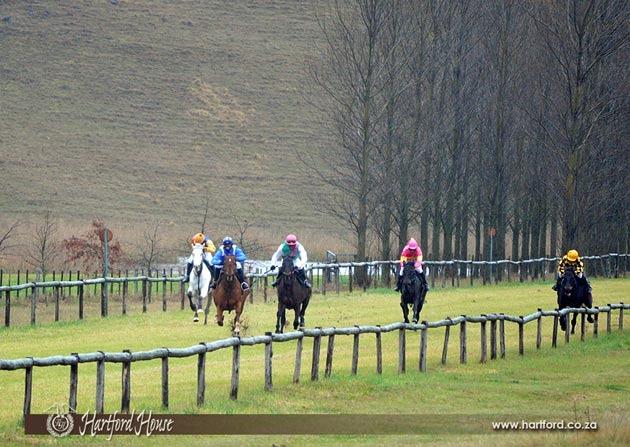 hartford-private-race-day-5.jpg