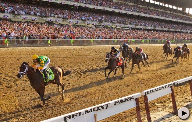 Palace Malice - Belmont Stakes