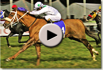 video of gibraltar blue winning the 2010 tibouchina stakes grade 2