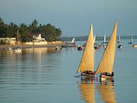 Lamu Coastline
