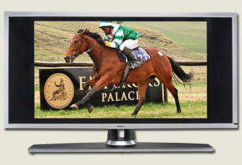 emperors palace ready to run breeze-up gallops videos